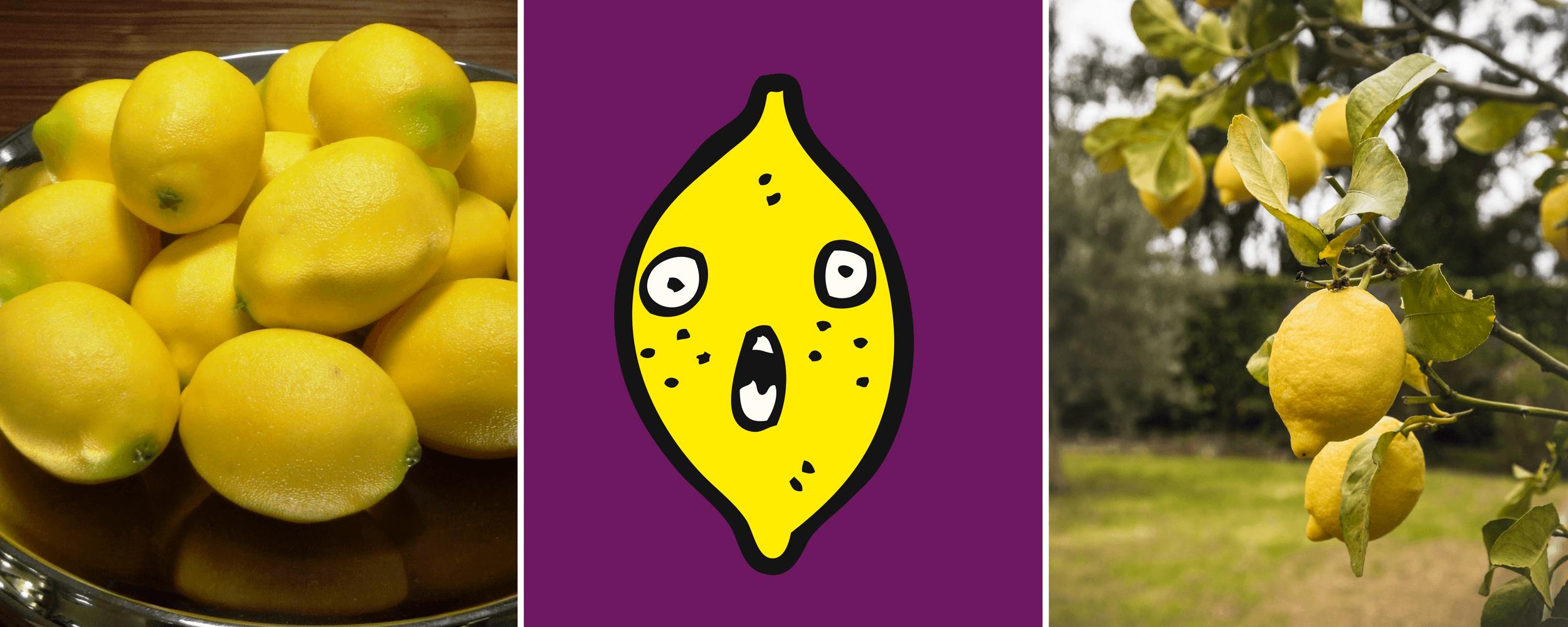 Marketing lemon on a form